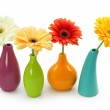 Flowers in vases — Stock Photo #6033839