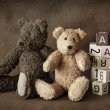 Teddy bears — Stock fotografie #6033907