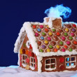Homemade gingerbread house — Stock Photo #6034467