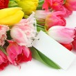 Colorful tulips with blank note — Stock Photo #6034813