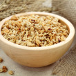Muesli — Stock Photo #6035152