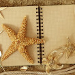 Exercise book and sea stars — Stock Photo