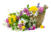 Mortar with fresh flowers — Stock Photo