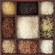 Assortment of rice - Foto Stock