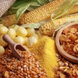 Maize products — Stock Photo