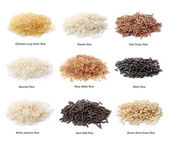 Rice collection — Stock Photo