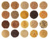 Zbiory zbóż — Zdjęcie stockowe