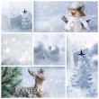 White christmas collage — Stock Photo