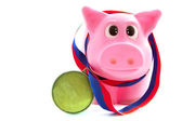 Pig of fortune — Stock Photo