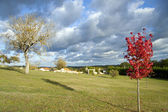 Landscape in autumn — Fotografia Stock
