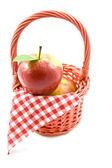 Apple picnic — Stock Photo