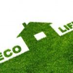 Eco Life — Stock Photo #5443945