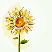Sunflower background — Stock Vector