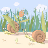 Meeting of two snails — Stock Vector