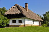 Village house — Stock Photo