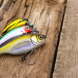 Fishing lures — Stock Photo #5633310