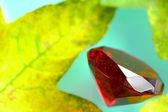 Ruby a listy — Stock fotografie