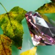 Stock Photo: Pink sapphire and yellow leaves