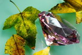 Růžový safír a žluté listy. — Stock fotografie