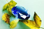 Modrý safír a listy. — Stock fotografie