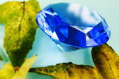 Blue sapphire and leaves — ストック写真