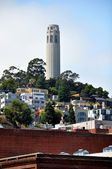 Coit tower — Stock fotografie