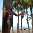 Duke Kahanamoku Statue — Stock Photo