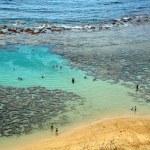 Hanauma Bay, Oahu, Hawaii — Stock Photo #5475447