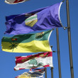 Canadian provincial flags — Stock Photo