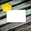 Royalty-Free Stock Photo: Blank card with dandelion