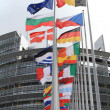 Flags of the european parliament - Stock Photo