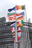 Flags of the european parliament — Stock Photo