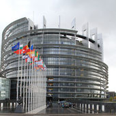 European parliament and flags of the european countries — Stock Photo