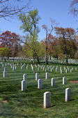 Arlington Cemetery — Stock Photo