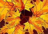 Abstract vector autumn background — Stock Vector