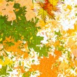 Vector autumn leaves abstract background — Stok Vektör
