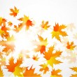 Vector autumn leaves abstract background — Stock Vector #6021488