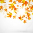 Vector autumn leaves abstract background — Stock Vector #6021499