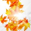 Vector autumn leaves abstract background — Stock Vector #6021771