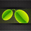 Leaves on carbon background - Stock Vector