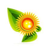 太陽の葉を持つ。性質の概念 — ストックベクタ