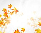Herfst vector abstracte achtergrond — Stockvector