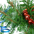 Fir tree branch with cristmas decoration on a white background. — Stock Photo