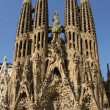 Detailed view of Sagrada Familia; great work of Antonio Gaudi — Stock Photo