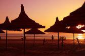 Sunset on the beach in Essaouria — Stock Photo