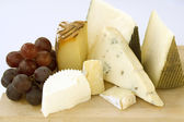 An assortment of cheeses on a cheese-board — Stock Photo