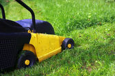 Mowing Lawn — Stock Photo