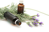 Lavender oil and lavender flowers on white background — Stock Photo