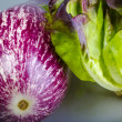 Stock Photo: Refine white-red aubergine