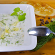 Polish dill soup — Stock Photo